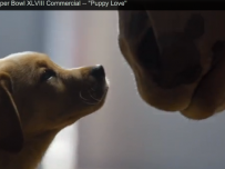 Budweiser Puppy Love advertiseent screen shot