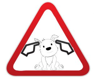 Dogs aware - Loud noise warning. Ablogfrommydog.com