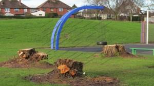 Trees cut in park near play area. Newtown Road, Carlisle