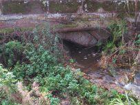 Not much room left under the bridge