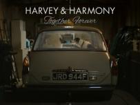 Harvey and Harmony Thinkbox advertisement