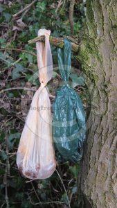Bags of dog poo hang on a tree